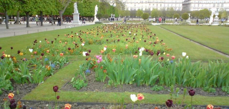 4. Jazyková výprava: rozkvetlý duben před Louvrem v Paříži
